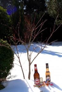Ostergeschenke im Schnee