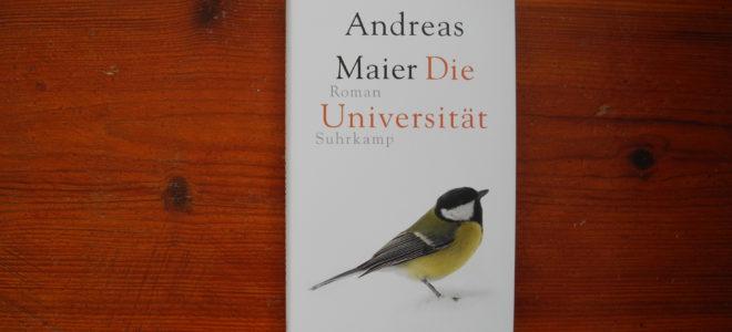 Die Universität: Studieren und Vegetieren eines Protagonisten