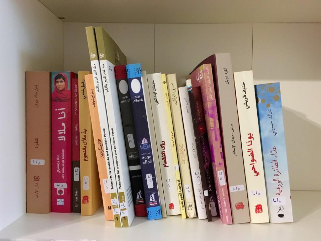 Bücher in der Asylothek Berlin