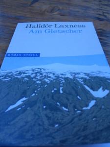 Laxness Am Gletscher
