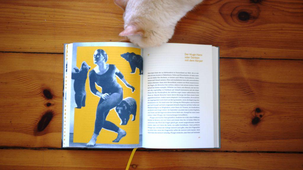 Eva Meijer, Die Sprachen der Tiere, Matthes & Seitz 2018 © Angie Martiens