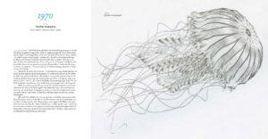 Eine entfaltete Doppelseite © Florian Weiß & Lucia Jay von Seldeneck / kunstanst!fter