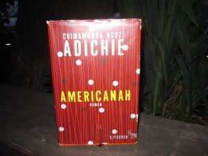adichie americanah